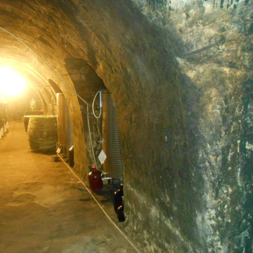 Vinný sklep - Vinařství Vrba Vrbovec u Znojma 15