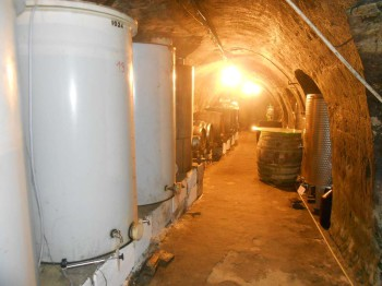 Vinný sklep - Vinařství Vrba Vrbovec u Znojma 04