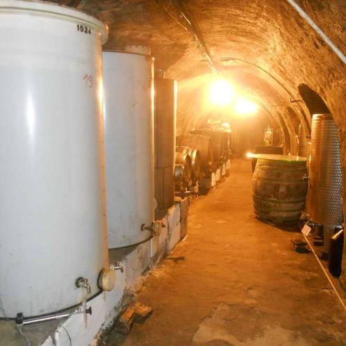 Vinný sklep - Vinařství Vrba Vrbovec u Znojma 13