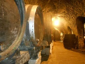 Vinný sklep - Vinařství Vrba Vrbovec u Znojma 05