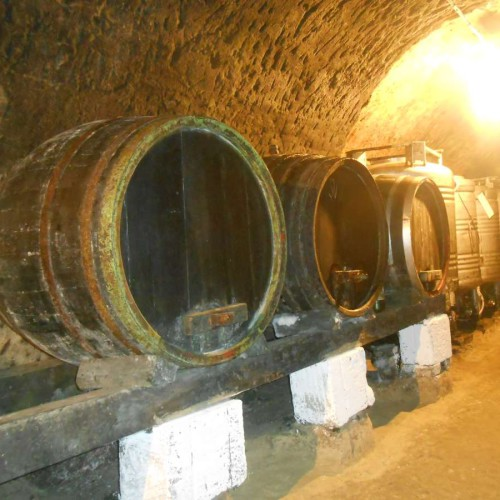 Vinný sklep - Vinařství Vrba Vrbovec u Znojma 11