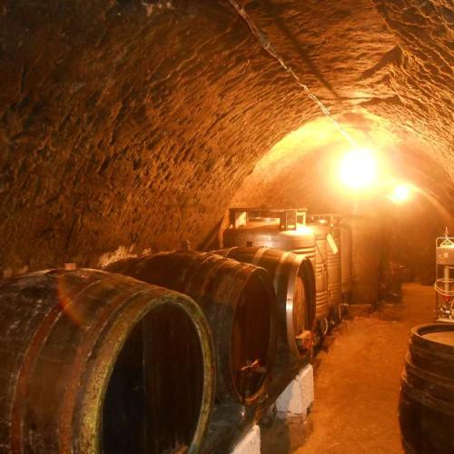 Vinný sklep - Vinařství Vrba Vrbovec u Znojma 10