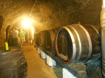Vinný sklep - Vinařství Vrba Vrbovec u Znojma 09