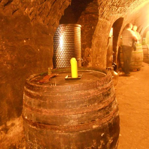 Vinný sklep - Vinařství Vrba Vrbovec u Znojma 07