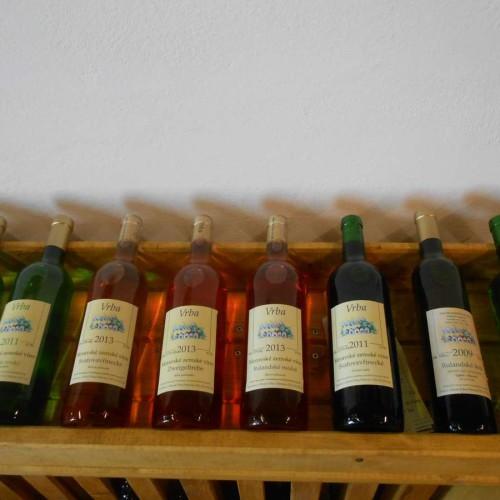 Vinný sklep - Vinařství Vrba Vrbovec u Znojma 06
