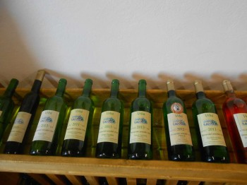 Vinný sklep - Vinařství Vrba Vrbovec u Znojma 12